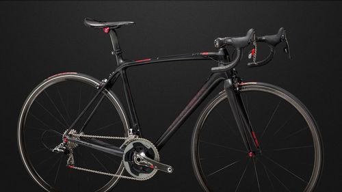 bicyclecolor08.jpg