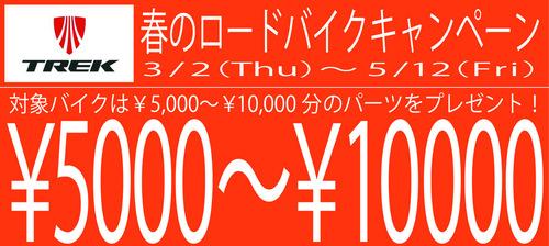 coupon02-thumb-500x224-16068.jpg